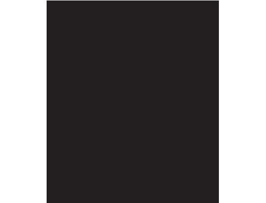 NY and Co Partner Logo