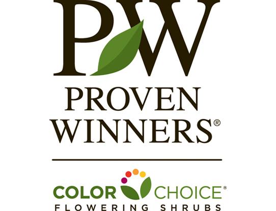 Proven Winners® ColorChoice®